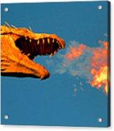 Fire Breathing Dragon Pano Work Acrylic Print