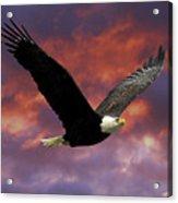 Fire Cloud And Eagle Acrylic Print