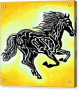 Fire Horse 3 Acrylic Print