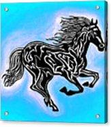 Fire Horse 5 Acrylic Print