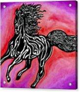 Fire Horse Burn 4 Acrylic Print