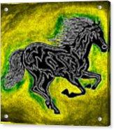 Fire Horse Neona 5 Acrylic Print