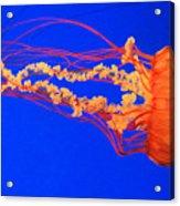 Fire In Water Acrylic Print