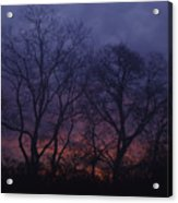 Fire Morning Acrylic Print