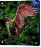 Fire Spirit 2 Acrylic Print