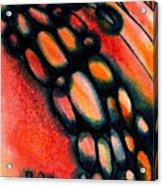 Fire Stones Acrylic Print