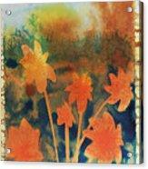 Fire Storm In The Wild Flower Meadow Acrylic Print by Amy Bernays