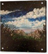 Fireflies At Dusk Acrylic Print