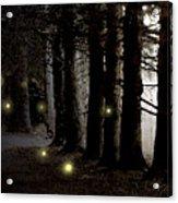 Fireflies Acrylic Print