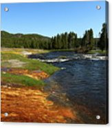 Firehole River Colors Acrylic Print
