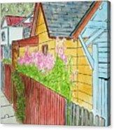 Fireweed In Juneau Acrylic Print