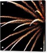 Fireworks 103 Acrylic Print