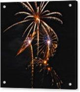 Fireworks 5 Acrylic Print by Michael Peychich