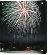 Fireworks And Wildlife Acrylic Print