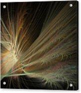 Fireworks Display Acrylic Print