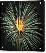 Fireworks Green Flower  Acrylic Print