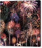 Fireworks Spectacular II Acrylic Print by Ricky Barnard