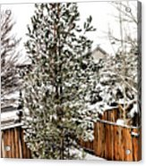 First Blanket Of Snow Acrylic Print