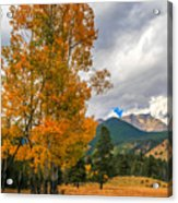 First Fall Colors In Rocky Mountain National Park Acrylic Print