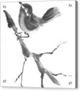 First Flight Acrylic Print