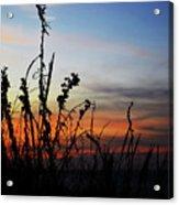 First Landing Sunset Acrylic Print