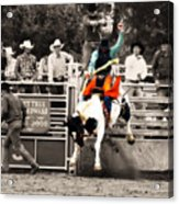 First Out Of The Chute Acrylic Print