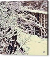 First Snow Acrylic Print