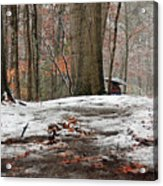 First Snowfall - A Walk In The Woods Acrylic Print