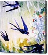 First Swallows Of Summer  Acrylic Print