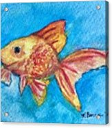 Fish Bowl Acrylic Print