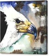 Fish Eagle II Acrylic Print