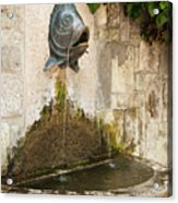 Fish Fountain Acrylic Print