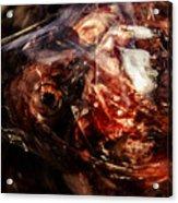 Fish Heads 02 Acrylic Print by Grebo Gray