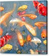 Fish In A Lake Acrylic Print