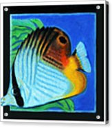 Fish Number Four Acrylic Print