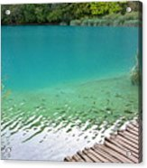 Fish Of Kaluderovac Lake Acrylic Print