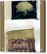 Fish Over Paris Acrylic Print