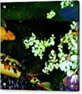 Fish Water Flowers 3 Acrylic Print