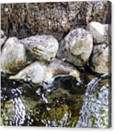 Fish Wives Fountain Detail Acrylic Print
