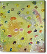 Fishes And Coral Acrylic Print