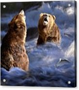 Fishing Alaska Acrylic Print