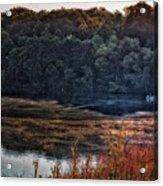 Fishing In The Fog Acrylic Print