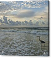 Fishing In The Morning Acrylic Print