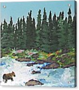 Fishing In Yellowstone National Park Acrylic Print