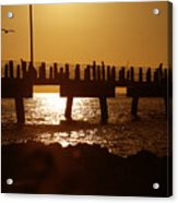 Fishing Off The Pier At Fort De Soto At Dusk Acrylic Print