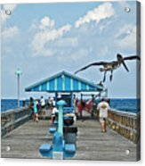 Fishing Pier With Flying Pelican Acrylic Print