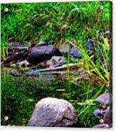Fishing Pond Acrylic Print