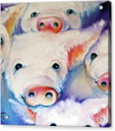 Five Little Squeals Acrylic Print