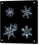 Five Snowflakes On Black 3 Acrylic Print