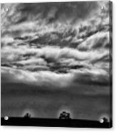 Five Trees In Clouds Acrylic Print